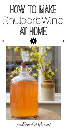 How to Make Rhubarb Wine at Home (That you'll be proud of!)   And Here We Are... #homesteading #homebrewing #wine #rhubarb #makewineathome