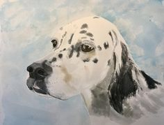 A winning French English Setter #art #watercolour #dog