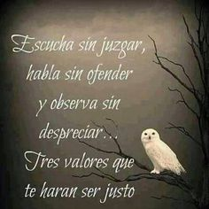 Home - Mejores Frases Wise Quotes, Inspirational Quotes, Qoutes, Smart Quotes, Yoga Quotes, Random Quotes, Quotes En Espanol, Frases Humor, Positive Words
