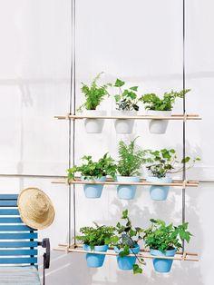 Best Of Pinterest: Tipps Für Garten Und Balkon | Inspiriert Durch ... Miniaturgarten Pflanzkubel Balkon