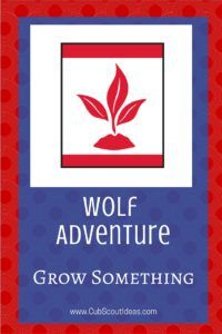 Find all you'll need to know about the Wolf Cub Scout adventure, Grow Something!
