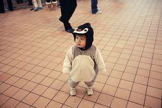 cute half asian baby - Google Search