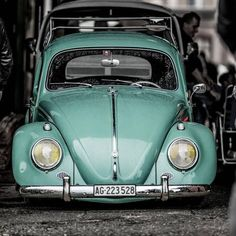 Carros Retro, Luxury Car Logos, Dog Car Accessories, Volkswagon Van, Old Bug, Vw Classic, Old School Cars, Mustang Cars, Cute Cars