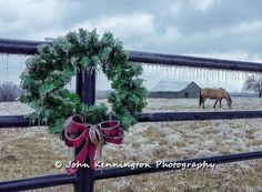 John Kennington Photography 2013-12-22 15-17-06 IMG_4185 Ice Storm Oklahoma Stone Bluff edited 11x15z.jpg