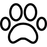Billedresultat for dyr tegnet