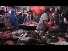 มาดูกัน!! ตลาดสด- เมนูแปลก ของต่างประเทศ Fresh exotic menu