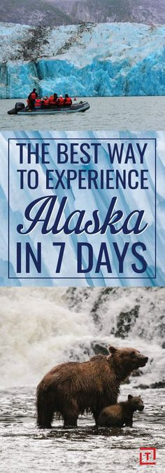 """""""Will I ever again do a set of triceps extensions with a humpback whale playing 300 yards away from me? Maybe tomorrow."""" #alaska #travel #adventure"""
