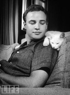 Cat, as pictured with Marlon Brando.