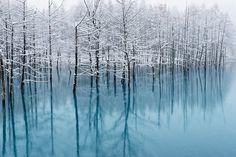 Blue Pond-Cool Colors by Kent Shiraishi, via 500px
