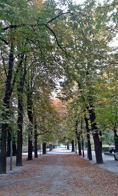 #autumn Wroclaw