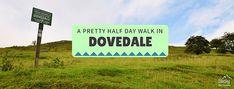 Dovedale walk - A pretty half day walk in Dovedale