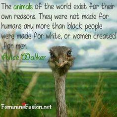 Alice Walker Quote ~ Animals