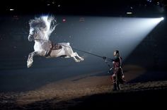 Leaping Lippizan - amazing, awesome, beauty, horse, leap, lippizan, show, spotlight, talent, unique, white