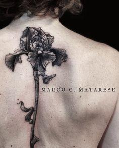Flower, iris, tattoo ideas. | Tattoo - linework, engraving, dotwork…