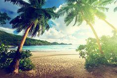 Islas paradisiacas del Índico africano: Mauricio, Reunión, Socotra o las Quirimbas son islas del Índico a las que aconsejamos viajar alguna vez en la vida, siempre que sea posible