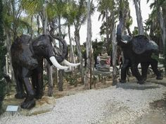 Photos of Buddha Eden Garden, Bombarral - Attraction Images - TripAdvisor