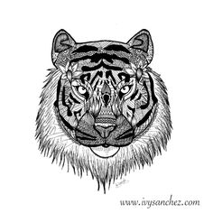 SUMATRAN TIGER. This tiger subspecies is found only on the Indonesian island of Sumatra. Fewer than 400 Sumatran tigers exist today. www.ivysanchez.com
