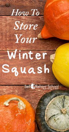 These tips for storing winter squash will help ensure you have fresh vegetables from your garden long into the winter months. #beselfreliant