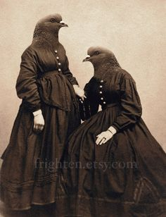 Pigeon Art Pigeon Sisters Collage Art Two Sisters Art by frighten