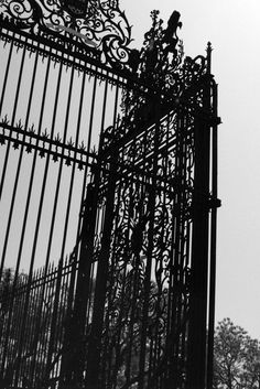aesthetic sometimes you just need a gate like this in front of your house. sometimes you just need a gate like this in front of your house. Gothic Aesthetic, Slytherin Aesthetic, Dark Fantasy, Dracula, Aestheticly Pleasing, Arte Obscura, Night Circus, Southern Gothic, Bellatrix