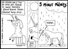 unicorn kurwa