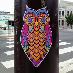 Colorful owl, wheatpaste sticker art