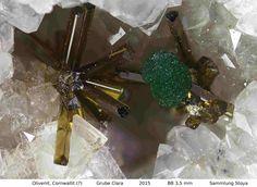 Olivenit, Cornwallit (?) ,  Clara Mine,Rankach valley, Oberwolfach, Wolfach, Black Forest, Baden-Würtemberg, Germany, Copyright © H. Stoya