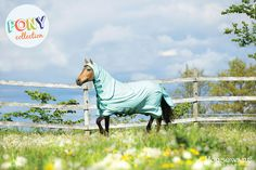 Horseware Collection S/S16: Rambo Sweet Itch Hoody Pony Collection. Visit www.horseware.com to find your nearest stockist.