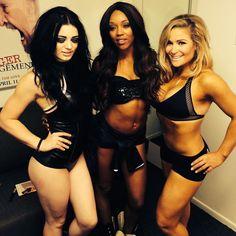 Paige, Foxy and Natalya