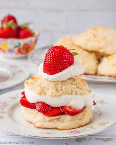 BEST Homemade Strawberry Shortcake This homemade strawberry shortcake recipe consists of a golden flaky biscuit piled high with macerated strawberries and sweetened whipped cream. Köstliche Desserts, Delicious Desserts, Dessert Recipes, Yummy Food, Baker Recipes, Homemade Strawberry Shortcake, Strawberry Recipes, Shortcake Recipe Easy, All You Need Is