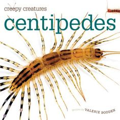 Some of our world's most intriguing animals are among its creepiest. This new series spotlights six mini-beasts that scurry, crawl, wriggle, or hop. Each book matches clear text with up-close (and often startling) photos to give young readers an easy-to-f Creepy, Early Readers, Bugs And Insects, Centipedes, New Series, Childrens Books, Creatures, Education, Mini Beasts