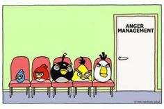 The Angry Birds!!