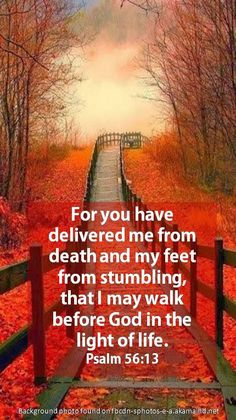 Psalm 56:13~ ACCEPT THAT GOD HAS DELIVERED YOU FROM DEATH~ Acknowledge the promises of God which He declares before us through His Word. When we accept His Word the Spirit will strengthen, protect and guide us. God watches over His own day and night. We who live by faith in the Son of God will never be put to shame. Biblical Quotes, Religious Quotes, Bible Verses Quotes, Bible Psalms, Psalm 56, Walk In The Light, Light Of Life, Hosanna In The Highest, Jesus Is Coming