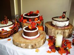 Celebrate your momentous occasion where country warmth and luxury are combined with culinary perfection in the our unique wedding venue in Ontario. Unique Wedding Venues, Wedding Themes, Adrenal Fatigue, Fall Wedding, Special Occasion, How To Memorize Things, Cake, Desserts, Ideas