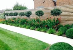 Flower Bed Maintenance, Tree Planting and Topiary