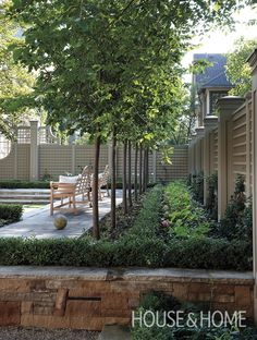 For an orderly look, plant crisp, linear borders around your backyard using evergreen hedges and slim-trunked trees. | Photographer: Mark Burstyn | Designer: Anthony Belcher