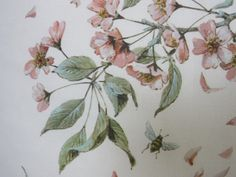 cherry blossom fabric and little bee-detail