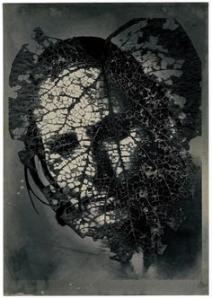 Emmet Gowin :: Mask Sheet, 2004, from Edith in Panama [Pace MacGill Gallery] more [+] by E. Gowin
