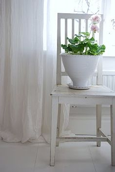 white chair and pink geranium