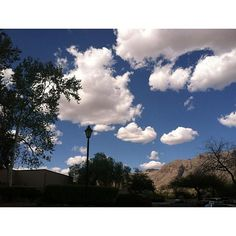 Day dreaming beneath the clouds in Tucson, AZ   The Westin La Paloma Resort & Spa