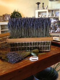 This beautiful dried French Lavender Hedge - designed & made in our studio in Cambridge Ontario - we run classes on how to make this www.fromthepottingshed.com - also on FB & Instagram