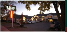 Situated in the unique Havelock North village, the heart of Hawke's Bay Wine Country, Te Mata Lodge offers self-contained motel accommodation. Havelock North, Holiday Park, Wine Country, Motel, Bed And Breakfast, New Zealand, Mansions, Luxury, House Styles