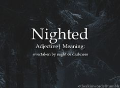 overtaken by night or darkness The Words, Weird Words, Words To Use, Fancy Words, Cool Words, Unusual Words, Unique Words, Beautiful Words, Book Writing Tips