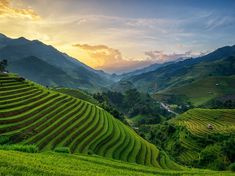 Mù Cang Chải manages to be one of the most breathtaking spots in Vietnam, with terraced rice fields and mountainous landscapes.