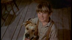 "Kevin Corcoran, the former Disney star and youngest brother in the 1957 classic ""Old Yeller"" has passed away at age He lost a 5 year battle with colorectal cancer in Burbank California. Old Yeller, Pleasing People, Burbank California, Child Actors, Disney Stars, Passed Away, Live Action, Disney Movies, We The People"