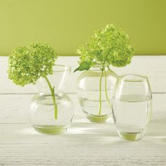 Two's Company Menage A Trios Set of 3 Bud Vases In Gift Box Includes 3 Shapes - Hand-Blown Glass – Modish Store