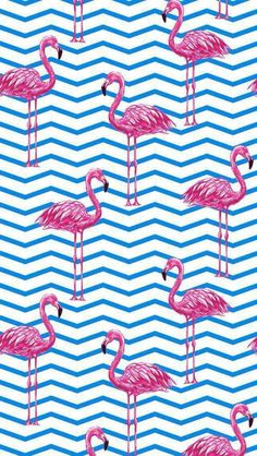 """""""Chevron Flamingos"""" in Cotton Elastane French Terry/Sweats Knit Wallpaper Pictures, Mobile Wallpaper, Pattern Wallpaper, Wallpaper Backgrounds, Iphone Wallpaper, Homescreen Wallpaper, Iphone Backgrounds, Flamingo Wallpaper, Summer Wallpaper"""