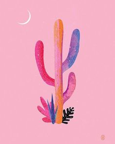 // desert dreaming // courtesy of Andrew Bannecker #pinkingly by pinkingly