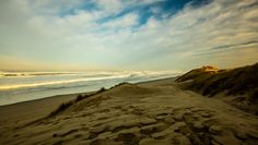florence sand dunes and beach at sunrise by markbowenfineart yellow landscape sunrise beach ocean usa florence oregon sand dunes canon florence sand dunes a Landscape Photos, Landscape Photography, Travel Photography, Florence Oregon, Sunrise Landscape, Photos Of The Week, Pacific Ocean, Dune, World