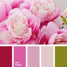 """dusty"" mauve, bright crimson, color combination, color gamma for wedding, color matching, crimson, dark pink, deep pink, gentle colors for wedding, green, green leaf color, light green, light pink, pale green, pale pink, pastel pink, pink ranunculus, purple, ranunculus colors."